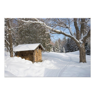 A snowy scene at the AMC's Little Lyford Pond Photographic Print