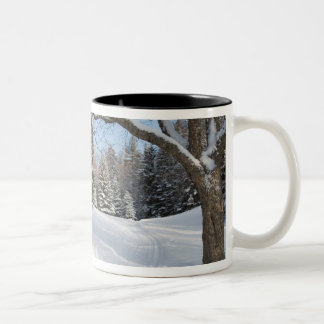 A snowy scene at the AMC's Little Lyford Pond Two-Tone Coffee Mug