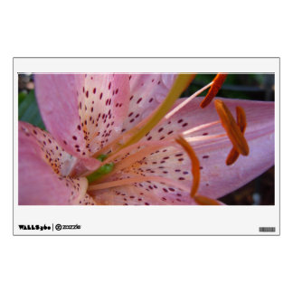 A Soft Pink Lily Wall Decal