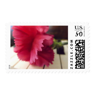 A Soft Pink Melody Postage Stamps