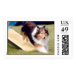 a solas sellos postales
