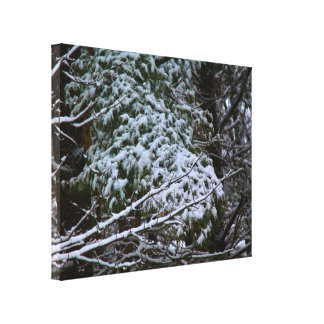 A Somber Scene Of Winter Canvas Print