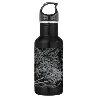 A Somber Scene Of Winter 18oz Water Bottle