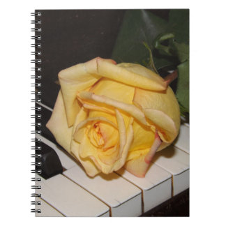 A Song From A Rose Notebook