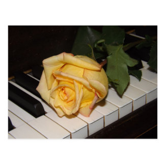 A Song From A Rose Postcard