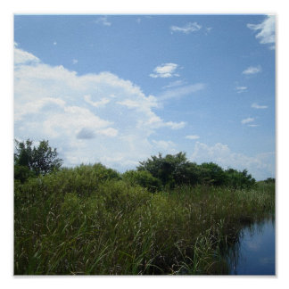 A South Florida Paradise Poster