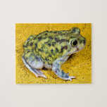 A spadefoot toad jigsaw puzzle