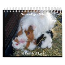 A Sparkle of Love Calendar