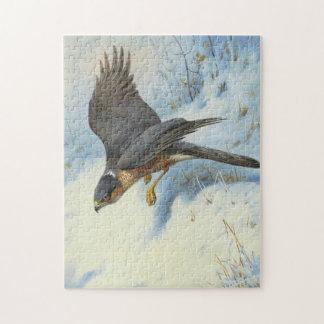 A Sparrow-hawk in Flight Puzzles