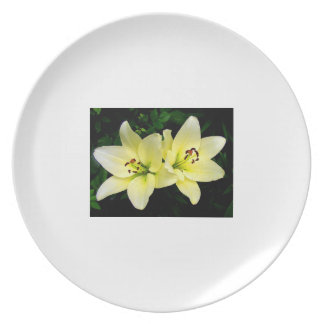 A special plate for people who love food.