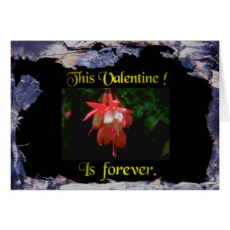 A Special Valentine. :-) Card