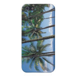 A Spectacular Ocean and Beach View  Case For iPhone 5