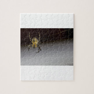 A Spider And His Web Up Close Jigsaw Puzzle