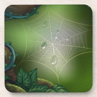A spider web in a rainforest beverage coaster