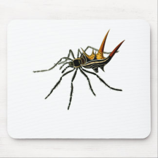 A spined orb-weaving spider mouse pad