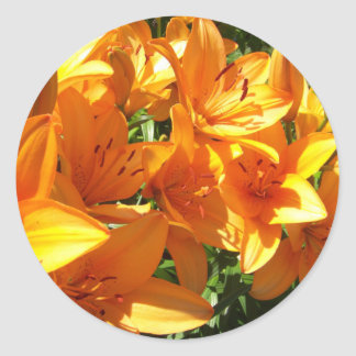 A Splash of Orange Classic Round Sticker