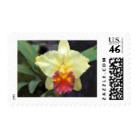 A Spot of Sunshine in the Garden Postage Stamps