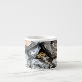 A spotted Frog hides among the rocks in a yard Espresso Cup