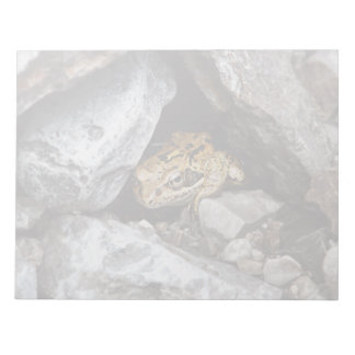A spotted Frog hides among the rocks in a yard Notepad