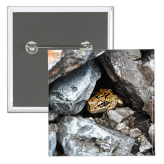 A spotted Frog hides among the rocks in a yard Pinback Button