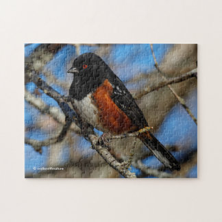 A Spotted Towhee in a Tree Jigsaw Puzzle
