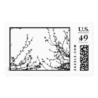 A spring affair stamp, US post Postage