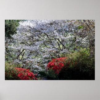 A spring garden poster