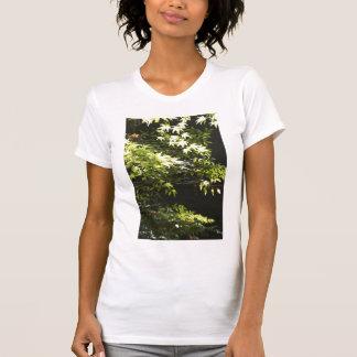 A spring leaf tshirts