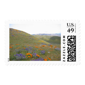 A Spring Lndscp Postage Stamps
