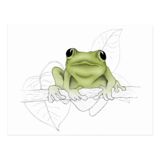 A Spring Peeper to Help Say Hello Postcard