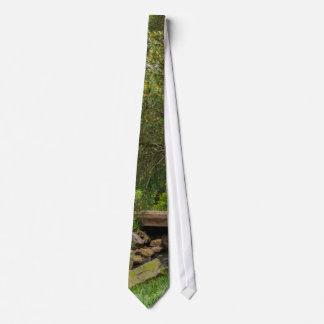 A Spring Stroll Neck Tie