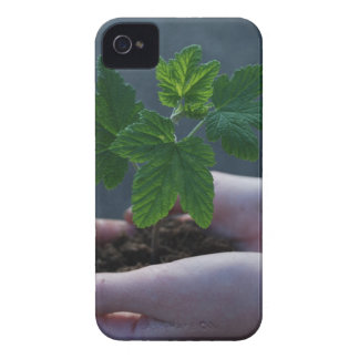 A sprout on a hand iPhone 4 Case-Mate case