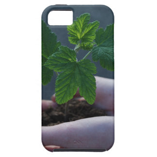 A sprout on a hand iPhone SE/5/5s case