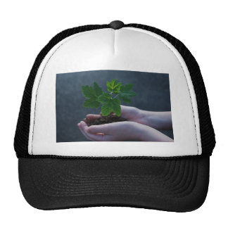 A sprout on a hand trucker hat