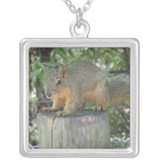 A Squirrel Necklace