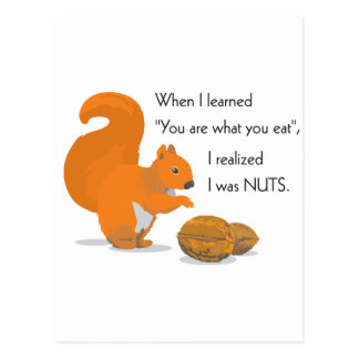 A squirrel's epiphany postcards