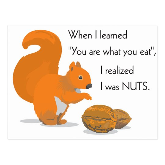 A squirrel's epiphany postcard