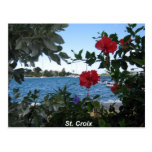 A St. Croix Kind of Day Post Card
