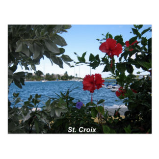 A St. Croix Kind of Day Postcard