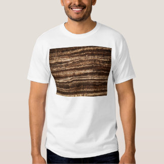 A stalagmite under the microscope t-shirt