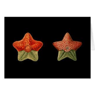 A starfish card