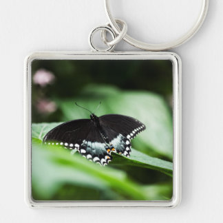 A Stately Appearance Keychain