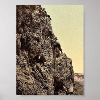 A steep climb, Tyrol, Austro-Hungary rare Photochr Poster