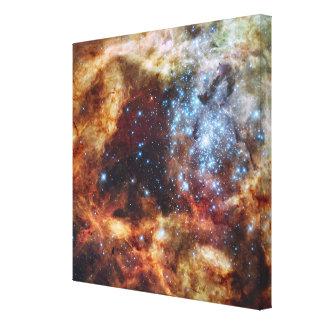 A stellar nursery known as R136 Canvas Print