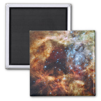 A stellar nursery known as R136 Magnets