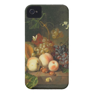 A Still Life on a Marble Ledge iPhone 4 Case-Mate Case