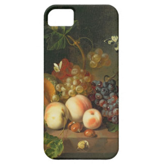 A Still Life on a Marble Ledge iPhone SE/5/5s Case