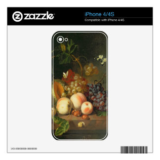 A Still Life on a Marble Ledge iPhone 4 Decal