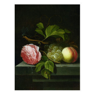 A Still Life with a Rose, Grapes and Peach Postcard