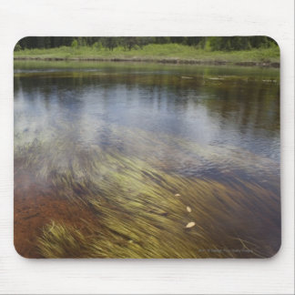A Still Pond Reflecting The Clouds Mouse Pad